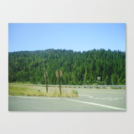 The Redwoods Canvas Print