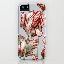 Semper Augustus Tulips iPhone Case