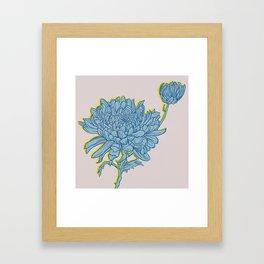 Chrysanthemum in Blue Framed Art Print