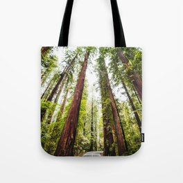 humboldt redwood forest Tote Bag