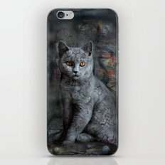 cats instantaneous iPhone & iPod Skin