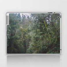Northwest Laptop & iPad Skin