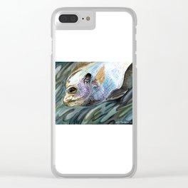 """Bluegill"" Clear iPhone Case"