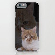 Dramatic Cat iPhone 6s Slim Case