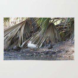Water Birds Rug