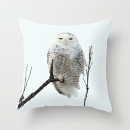 Snowy in the Wind (Snowy Owl 2) Throw Pillow