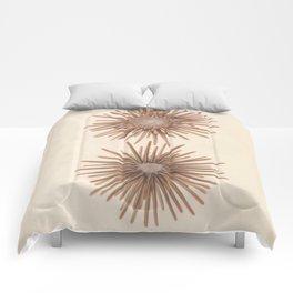 Naturalist Sea Urchins Comforters