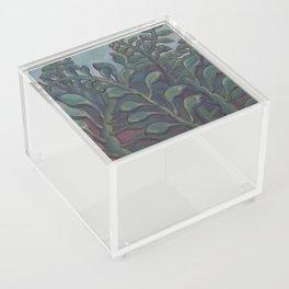 Mood Swings Acrylic Box
