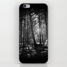 Shining Through iPhone & iPod Skin