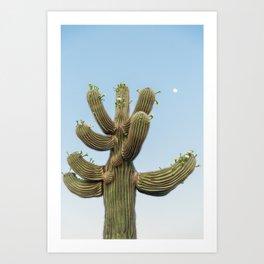 Saguaro Blooms and Moon Art Print