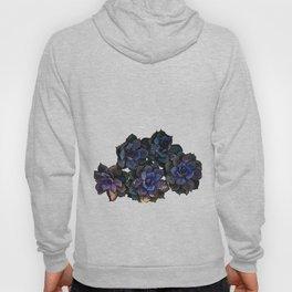 Succulents IIII Hoody
