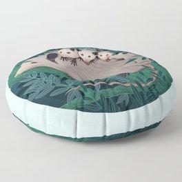 Storge Floor Pillow