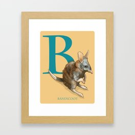 """B is for Bandicoot"": The UnderAppreciated Animals™ series Framed Art Print"