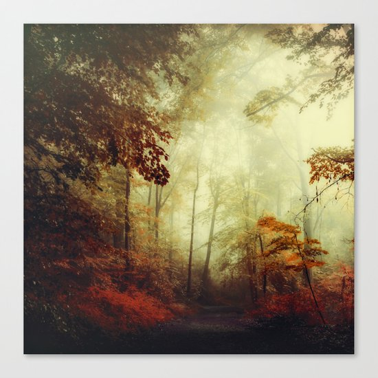 That's not my way - misty woodland Canvas Print