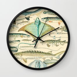 Vintage Fishing Diagram // Poissons II by Adolphe Millot 19th Century Science Textbook Artwork Wall Clock