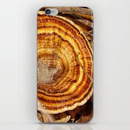 Beautiful Bracket Fungi iPhone Skin