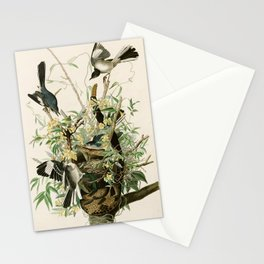Mocking Bird - John James Audubon's Birds of America Print Stationery Cards