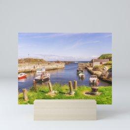The Little Harbour Mini Art Print