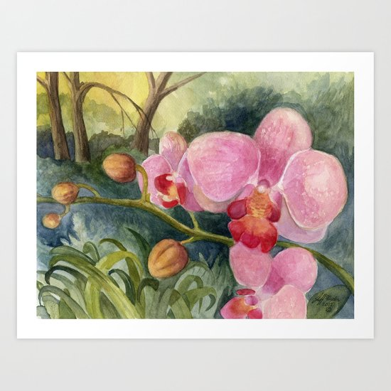Orchid Beauty Art Print