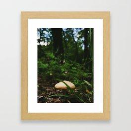 Faerie View Framed Art Print