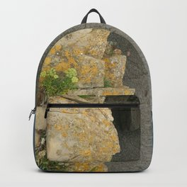 Cantabria Backpack