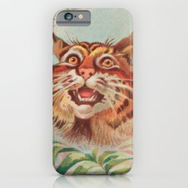 American Wild Cat by A&G iPhone Case