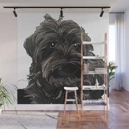 Schnauzer dog Wall Mural