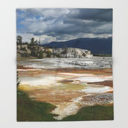 Grassy Spring View Throw Blanket