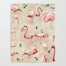 Flamingos Vintage Pink  Poster