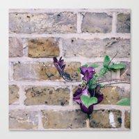 climbing Canvas Prints featuring Climbing by cara forbes photography