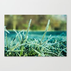 on a cold and sunny morning Canvas Print