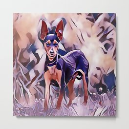 The Miniature Pinscher Metal Print