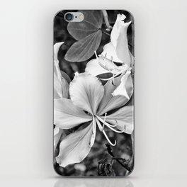 Beautiful butterfly tree flower iPhone Skin