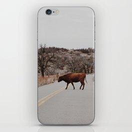 Longhorn Jam iPhone Skin