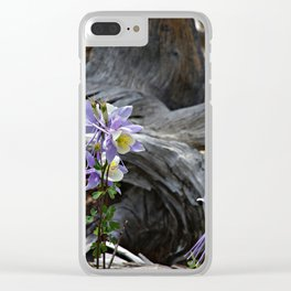 Columbines and Stump Clear iPhone Case