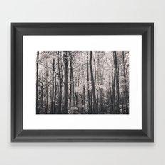 Deep in Woodland Framed Art Print