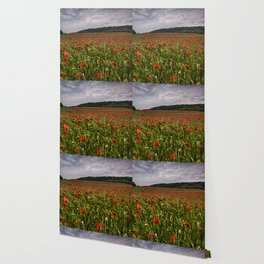 Boxley Poppy Fields Wallpaper
