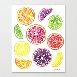 Citrus Wheels Canvas Print