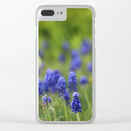 Grape Hyacinth in Spring Clear iPhone Case