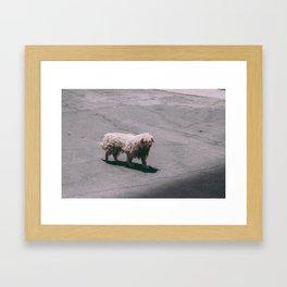 Beautiful Dog Framed Art Print