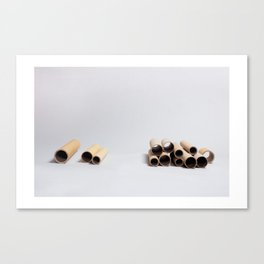 Paper Roll 2 Canvas Print