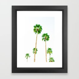 palm trees in palms springs 2 Framed Art Print