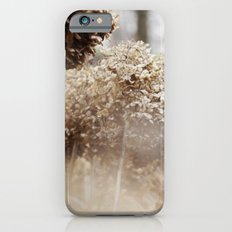 Dreamy Visions iPhone 6s Slim Case