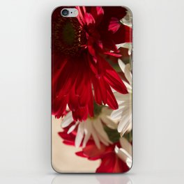 Gerbera Number 25 iPhone Skin