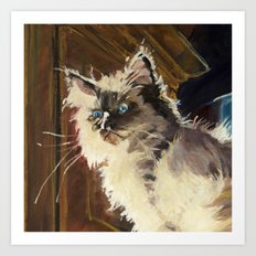 The Magnificent Ascent of the Mighty Bear Detail (Ragdoll Kitten) Art Print