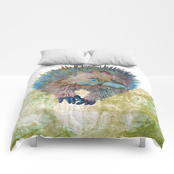 Echidna Explorer Comforters