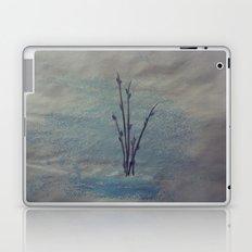 Pussy Willows Laptop & iPad Skin