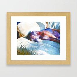 Sleeping in the Sun on a Chair Framed Art Print