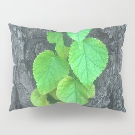 Cascade of Green Leaves Growing on Tree Bark Pillow Sham