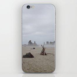 Bandon Beach Bird iPhone Skin